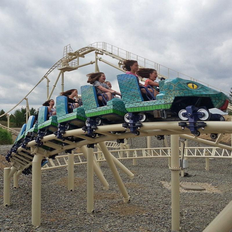 Roller Coaster Family