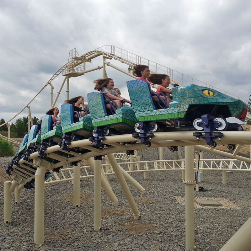 OEM roller coaster for sale flyer f1 mini roller coaster for sale